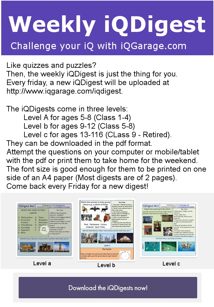 Weekly quiz and puzzle digest